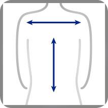 Funktion Rückenbereich